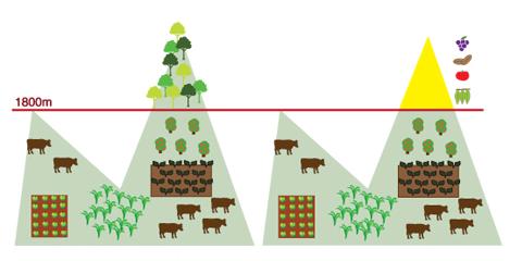 Pontos do novo Código Florestal (infográfico: Stefanie Kanzian)