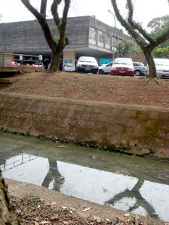 Trecho do Tejo em frente ao prédio da Mecânica (Foto: Ana Pinho)