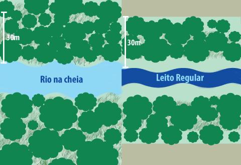 Com o novo Código, a extensão das matas ciliares vai diminuir. Isso ocorrerá porque a contagem da área que deve ser preservada será feita a partir do leito regular do rio (infográfico: Paula Zogbi Possari)