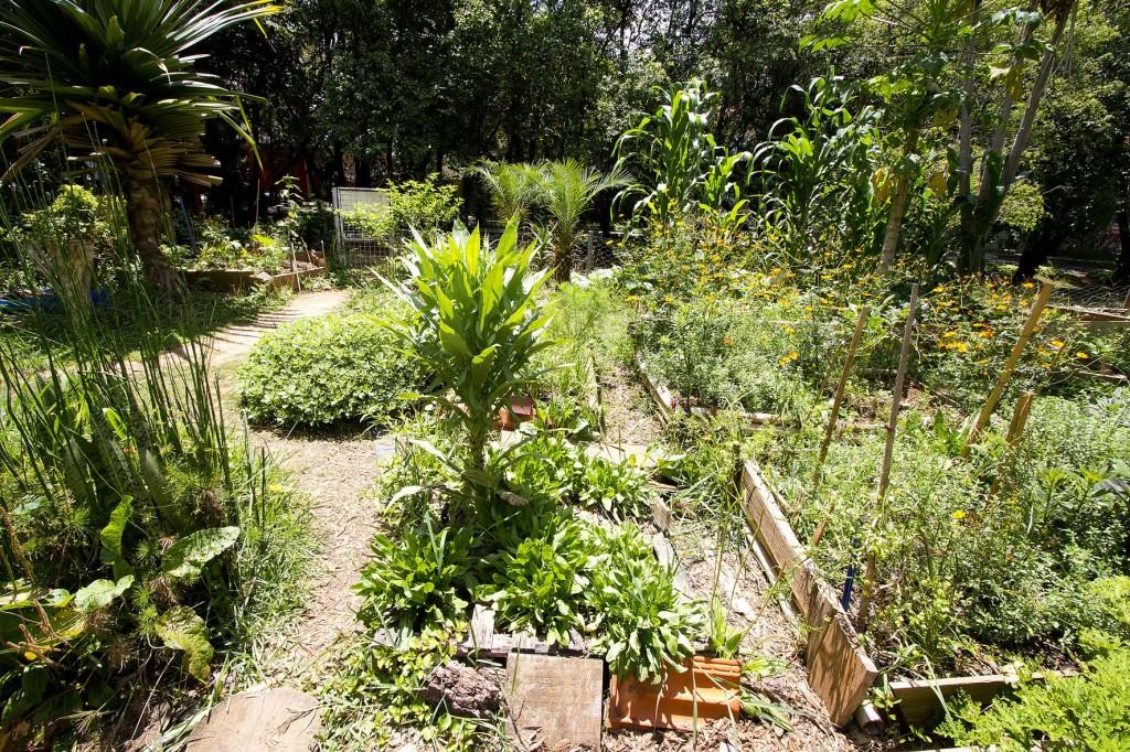 Horta das Corujas, primeira horta ativista e comunitária em São Paulo, na região da Vila Madalena (foto: Marcos Santos)